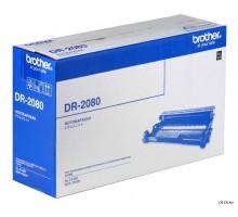 Покупка DR-2080